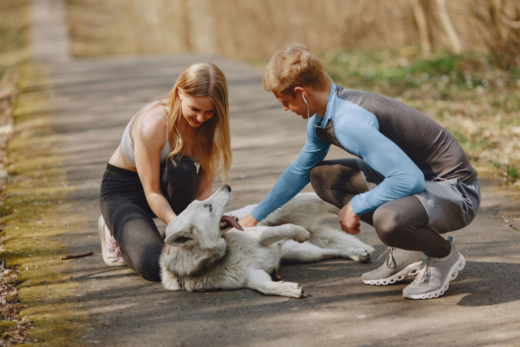 Puppy Obedience Training Tips