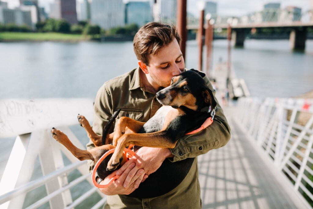 What Is The Best Way To Train Your Dog
