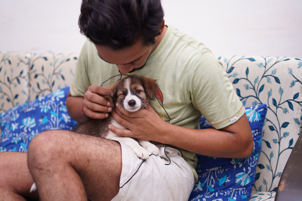How To Bond With Your Puppy